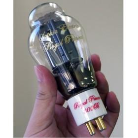 מנורה סופייה אלקטריק 300B